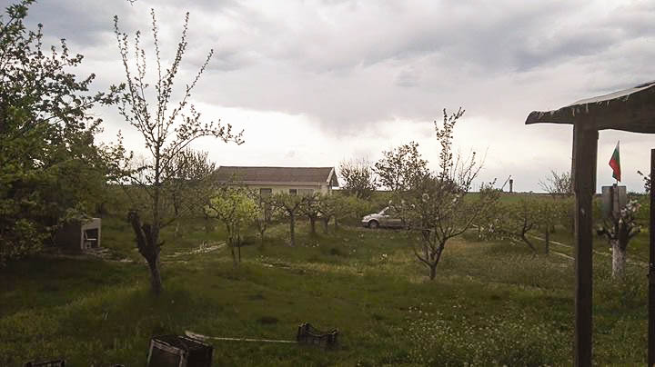 2-bedroom house, 20 000 sq. m land with an apple orchard